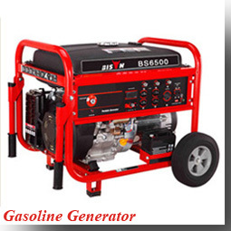 BISON(CHINA) Made In China OEM Factory 3kw Natural Gas Generator