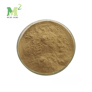 Factory Supply 99% CAS 327-97-9 chlorogenic acid benefits