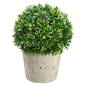 "9""Hx7""W Matai Ball-Shaped Artificial Topiary Plant w/Cement Pot"