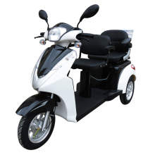 Three Wheel Handicapped Bike Electric For Sale
