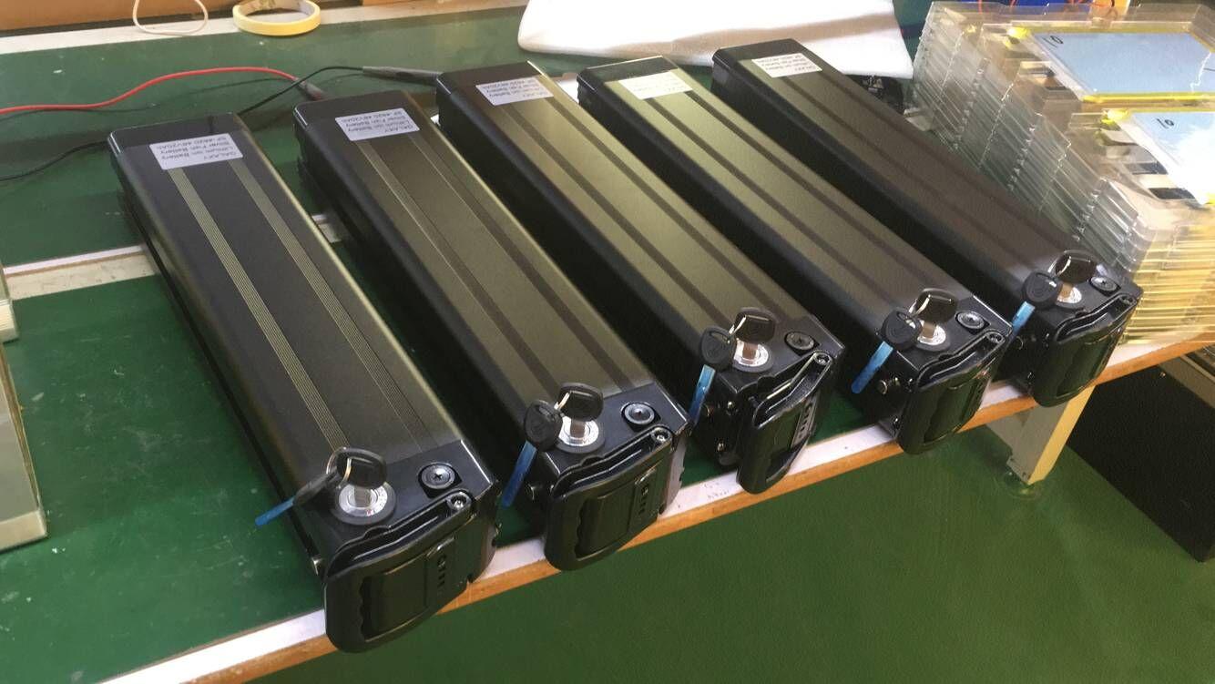 Peixes de prata 48v 20ah ebike bateria