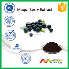 Professional Supplier Health Care Natural Maqui Berry Extract Powder