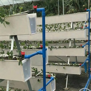 Skyplant Hydroponic growing Strawberry channel system plant