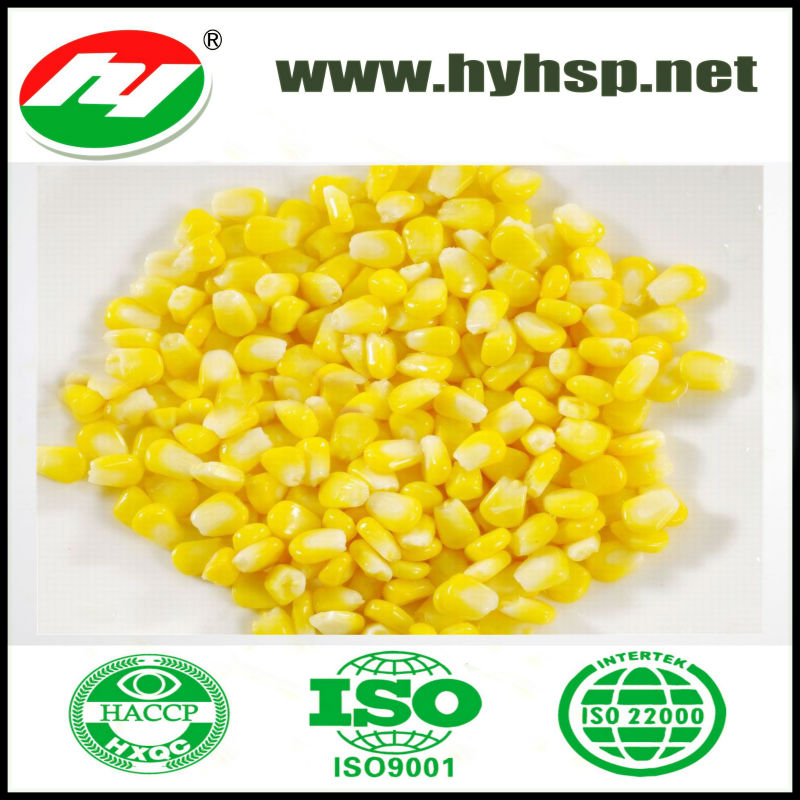 Sweet Kernel Corn frozen or vacuum pack both supply