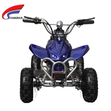 500W, 800W 1000W Electric Mini ATV, Mini Quad for Kids (CS-E9053)