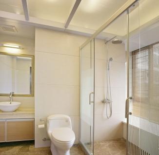 Bathroom Partition Panels Interior color customized design lowes bathroom partitions panels/glass