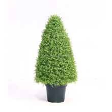Minitype Greenery <span class=keywords><strong>Plastic</strong></span> Topiary <span class=keywords><strong>Boom</strong></span>