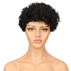 Womens Mongolian Afro Kinky Curly Human Hair Wigs For Black Women Non Lace Front Human Hair Wigs Jerry Curls Wig Ladies Fashion
