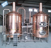 50L 100L 500L 1t mini brewery equipment/ micro brewery fermenter/ home beer brewery