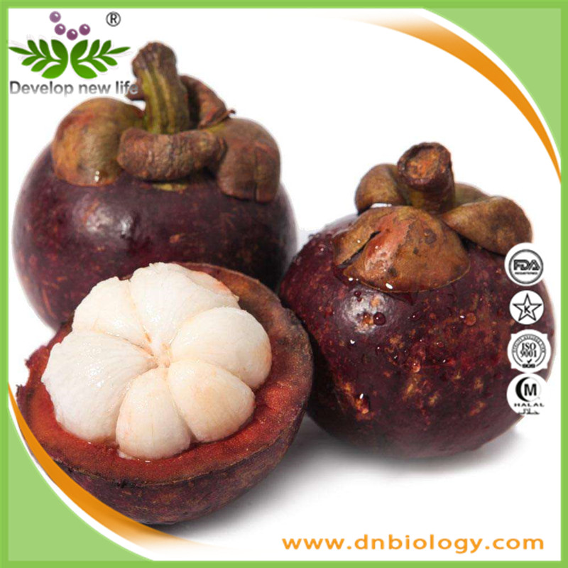 High quality Mangosteen Extract 10%, 30%, 90% mangostin 20%Polyphenol 10%~40% xanthone for health supplement