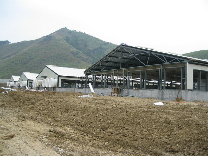prefab morden automatic steel structure pig shed