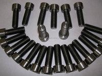 titanium torx bolt/DD Ti