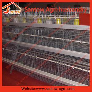 Raising Rabbits Wholesale, Rabbit Suppliers - Alibaba