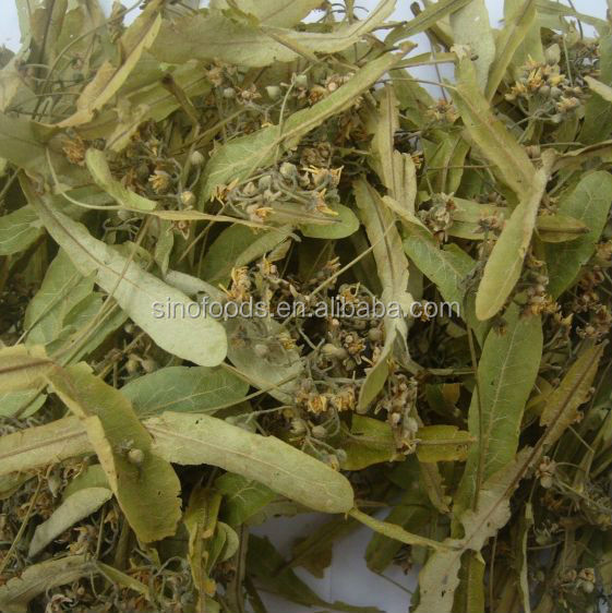 Duan shu hua China Wholesale dried Herbs Linden Flowers