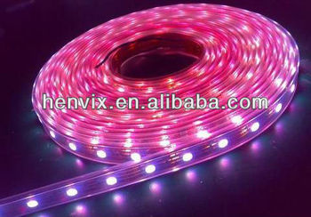 5050smd Dc12v Ip65 Waterproof Black Light Led Strips