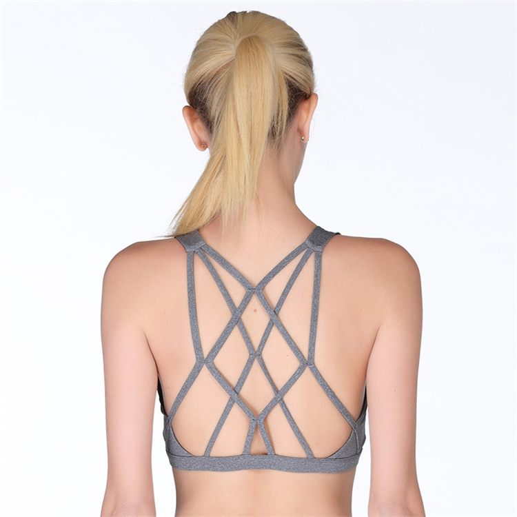Wholesale Cheap Stretch Cross Women Net Sexy Model Bra