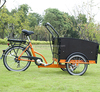 trike motorcycle electric bisikle 36V family electric cargo tricycle bike/cargobike/bakfiets UB9031E