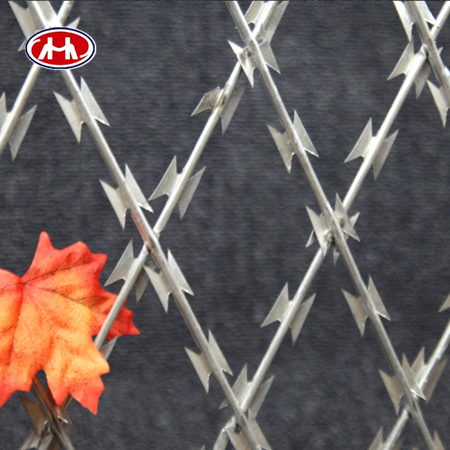 low price hot dipped rust proof modern security fencing type single coil spiral iron razor barbed wire galvanized supplier