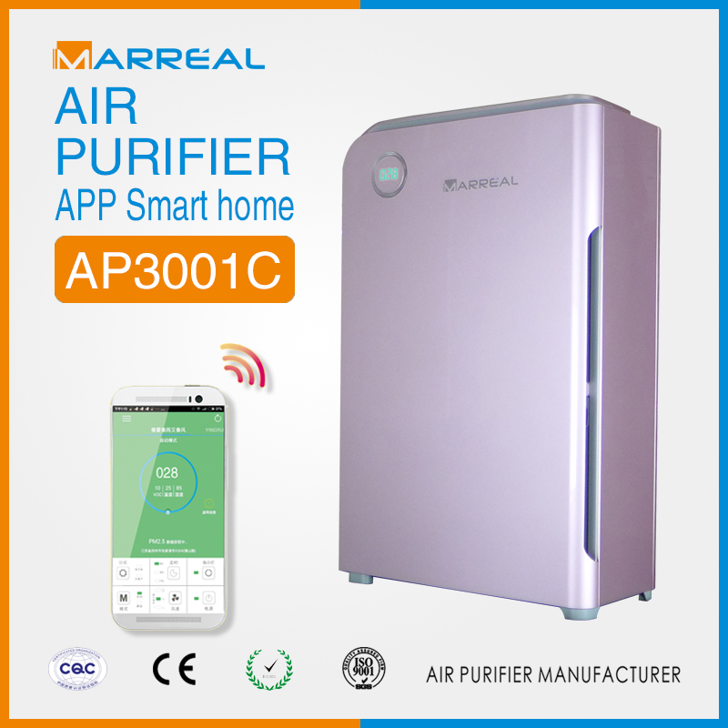 Natural air purifier with filter replacement filter for for promotional gifts