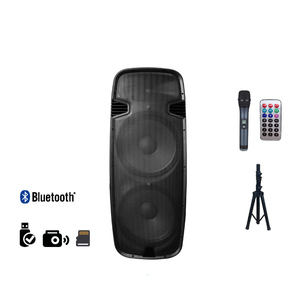 Double 15 inch woofer high quality sound effect full range powered speaker box
