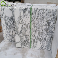 High Quality China Natural M814 Arabescato Corchia Polished Marble Tile for Interior Wall and Floor
