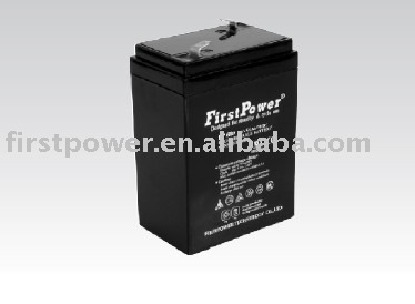 FirstPower Standard Series FP650 batteries