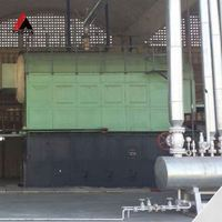 Automatic Control China Supplier Coal Steam Boiler For Fertilizer Factory