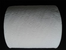 Virgin wood pulp 2ply toilet tissue toilet roll decorative toilet paper