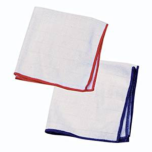 E-Cloth Wash & Wipe Dish Cloth - 1 Blue Trim & 1 Red Trim - 2 Cloth Pack