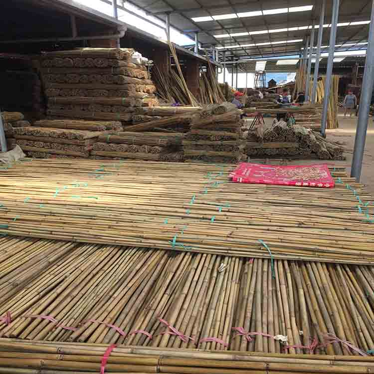 Agriculture Bamboo Sticks Raw Bambou Poles for Nursery Planting
