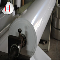 White opaque pet film price
