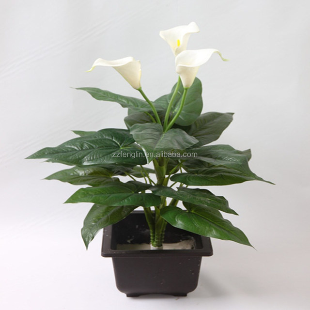 Common Flowers In Bouquets Wholesale, Flower In Suppliers - Alibaba