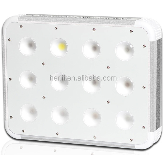 200W LED Hydroponic Grow Lighting COB with Full Spectrum for Plants Growth
