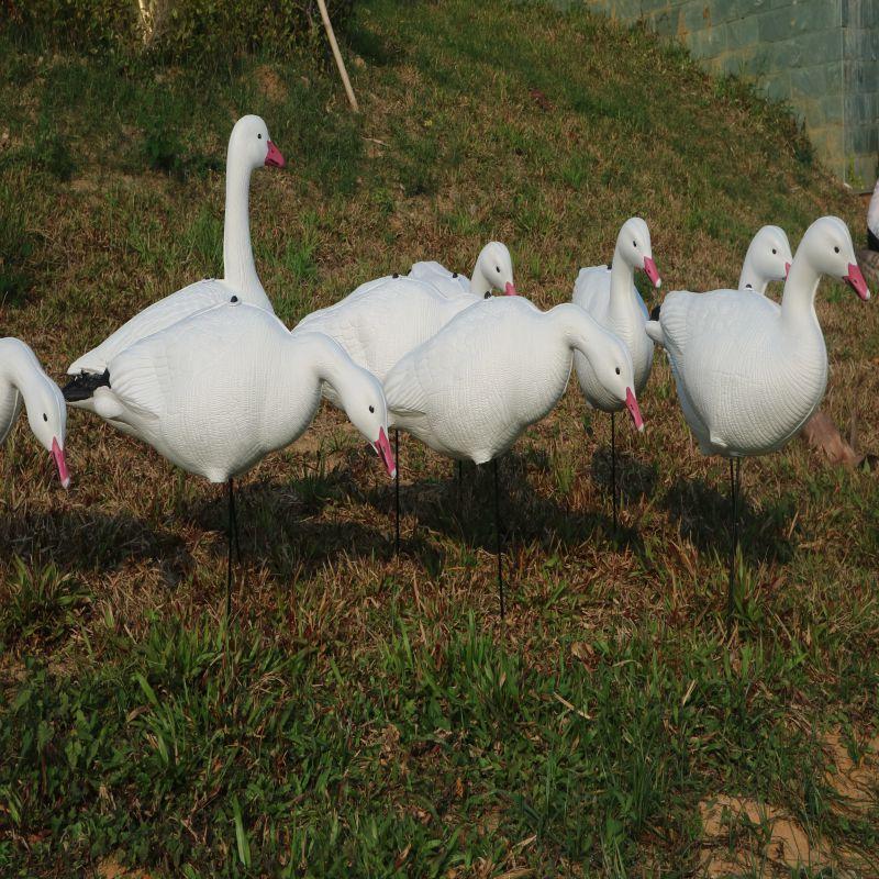 China foam goose decoy wholesale 🇨🇳 - Alibaba