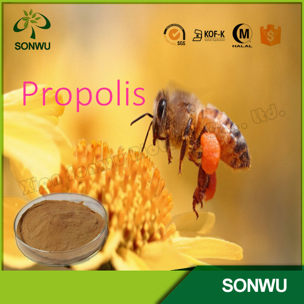 Hot-selling raw propolis/bee propolis