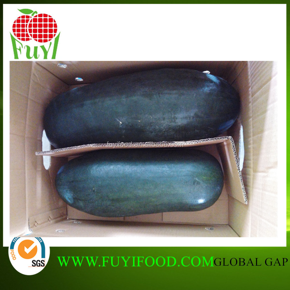 BIG SIZE CHEAP CHARGE SWEET WATERFUL CHINESE WINTER MELON