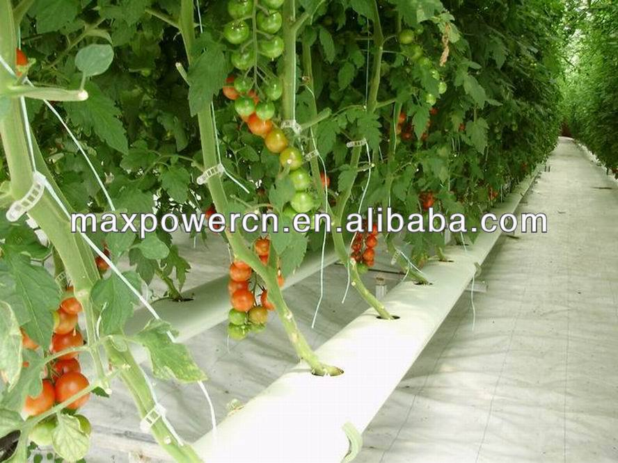 aeroponics hydroponics system for agricultural greenhouse