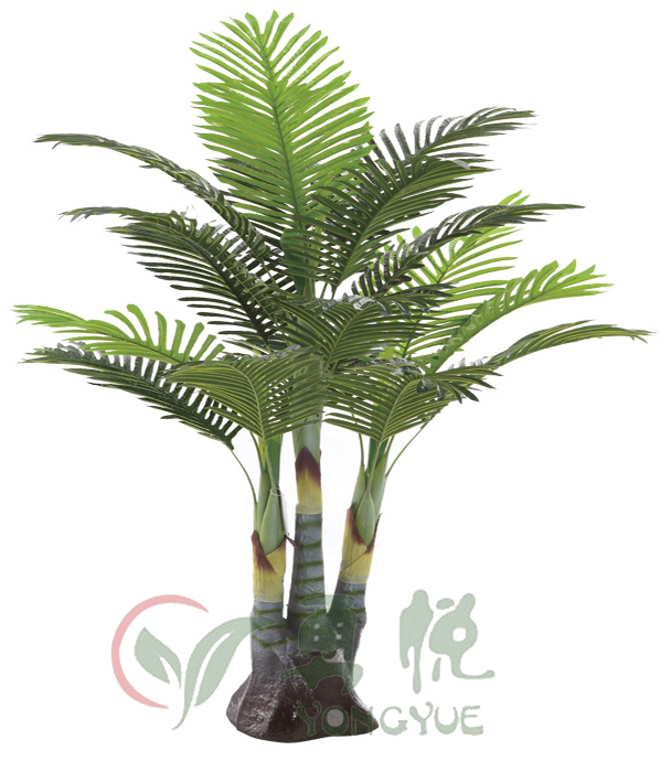 1.6m supplier from china palm tree types