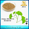 nature ginkgo biloba leaf extract
