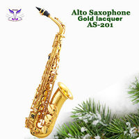 China suppliers music instruments of alto saxophone with bag