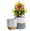 flower pots with ped