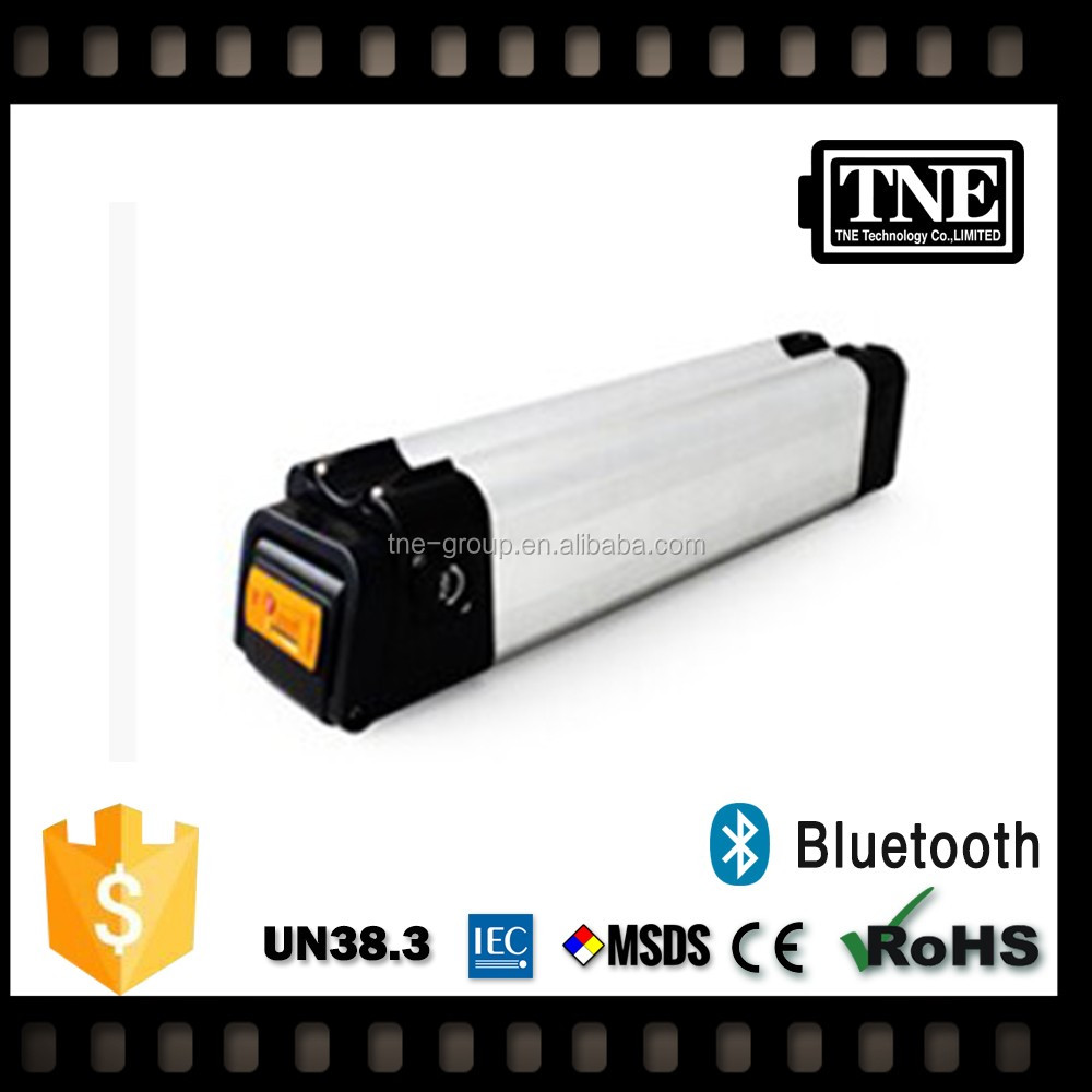 TNE 18650 250v lifepo4 electric bicycle battery