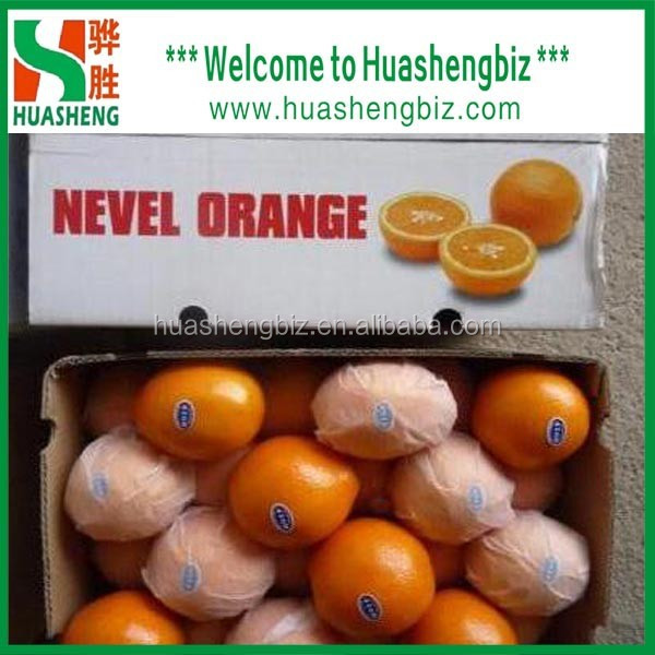 New Year Special Offer - Fresh Oranges/ Mandarins