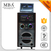 High power big battery DVD Trolley portable battery speaker with LCD screen,Bluetooth ,USB,SD ,FM Radio