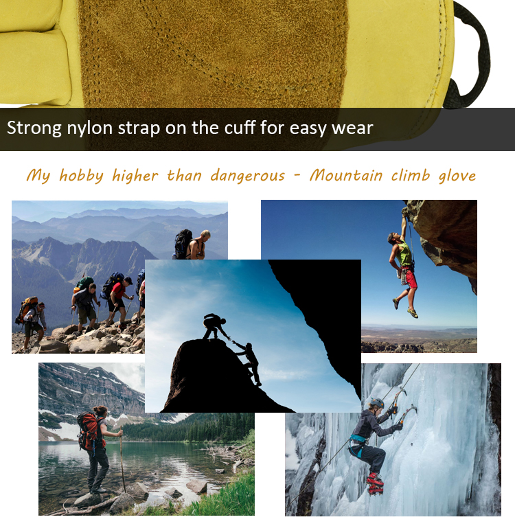 Promotional Trekking Hiker Mountain Climbing Indoor Rock Climbing