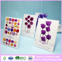 popular small size greeting cards all occasions