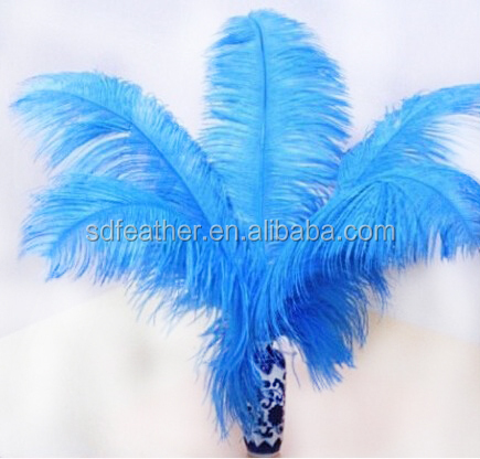 Factory Wholesale Dyed Colored Bulk Ostrich Feathers Cheap for Sale Party Wedding Hat Decoration