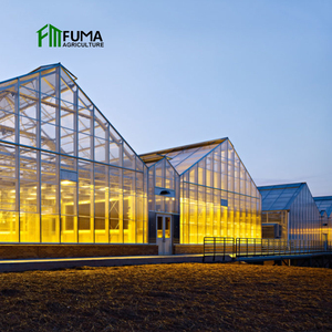 FM Commerical Hydroponic Agriculture Greenhouse for sale
