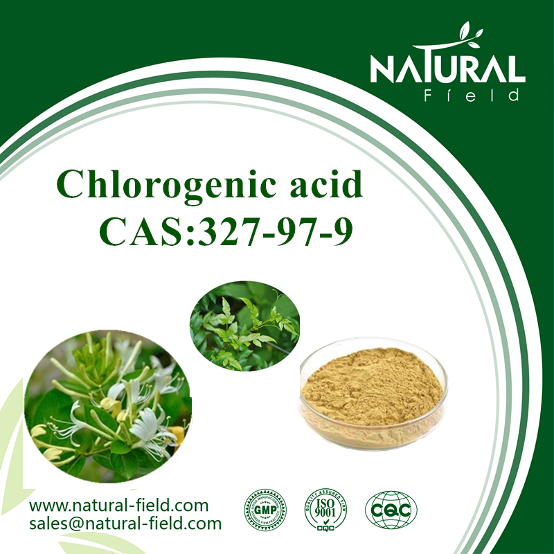 Factory supplement 98% chlorogenic acid extract
