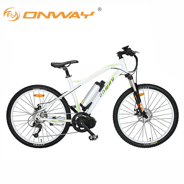 Bafang center motor mountain ebike